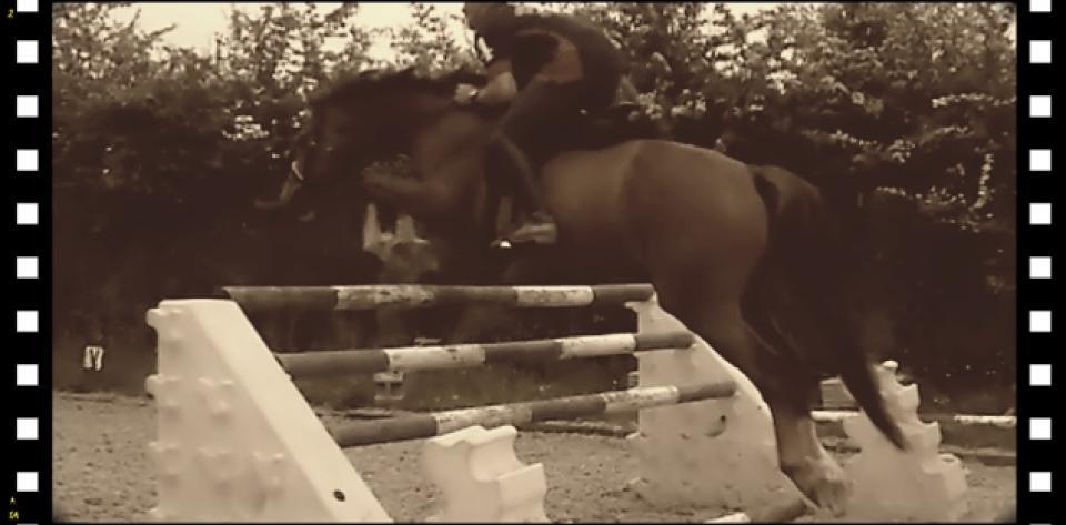 contact-simply-horsemanship